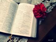 Invitaţia De Nuntă Resurse Creștine